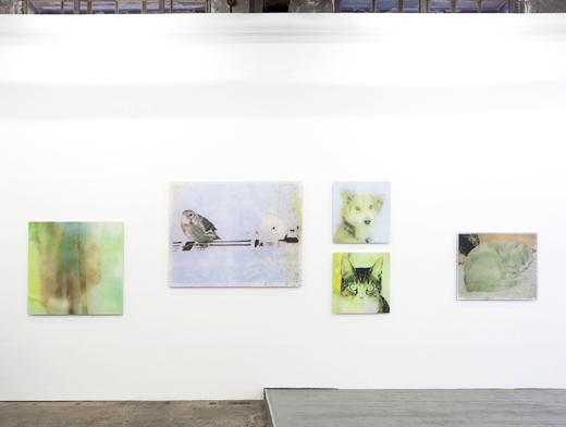 Ausstellung Galerie Queen Anne
